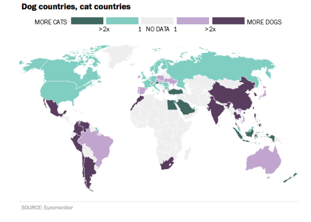 Katten en honden internationaal
