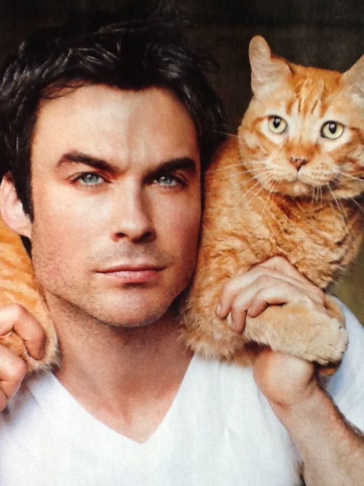 Nieuws: Katten en mannen - alleskatten.nl Jesse Eisenberg Cats