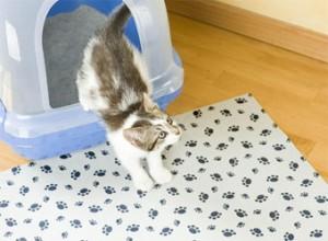 Kat kattenbakmat 2