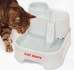 Kat drinkt 2
