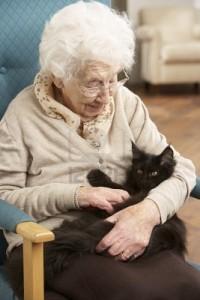 Oude vrouw met kat
