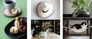 Kattencafé Kopjes